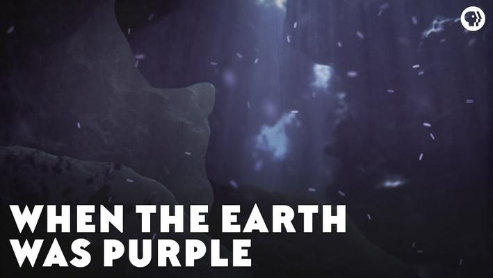 When the Earth Was Purple | Eons