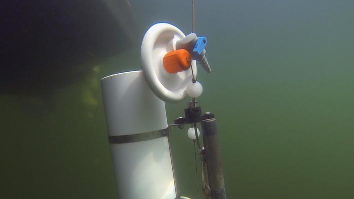Testing Lake Coeur d'Alene