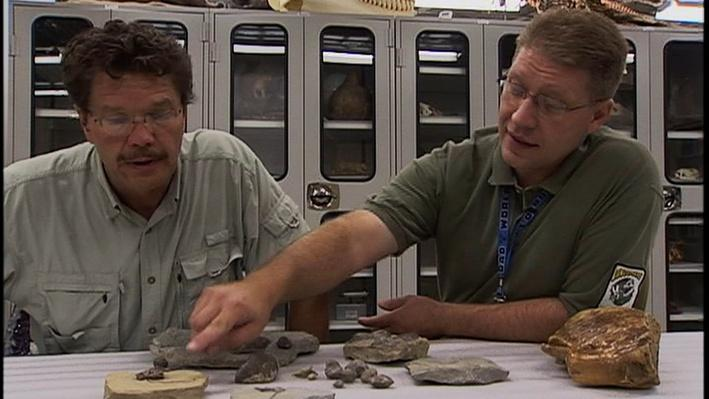 Indiana Fossils | Indiana Expeditions