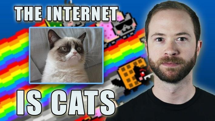 Is the Internet Cats? | PBS Idea Channel