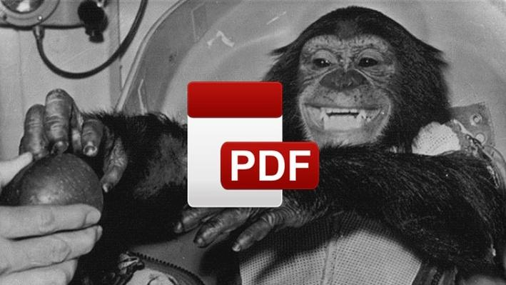Do Now: When Should Animals Be Used for Research or Industry Testing?