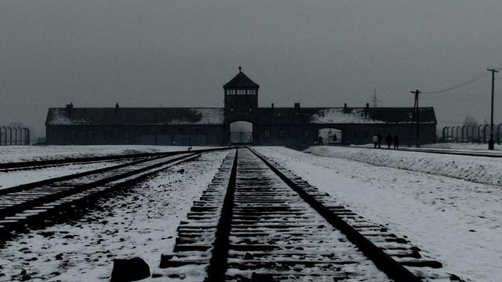 Part 1: Auschwitz | Meeting Max: A Holocaust Survivor's Story
