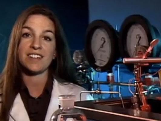 Dr. Michaelann Tartis, Assistant Professor