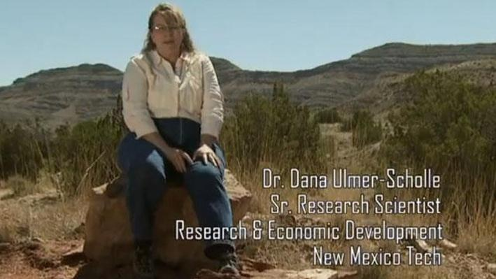 Dr. Dana Ulmer-Scholle, Sr. Research Scientist