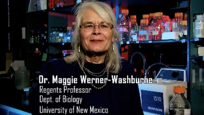 Maggie Werner-Washburne, Regents Professor