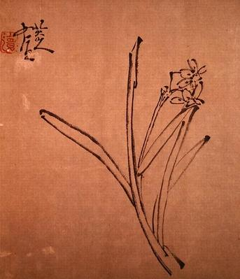 Narcissus (ink on paper), Chu Ta (c. 1626-1705)