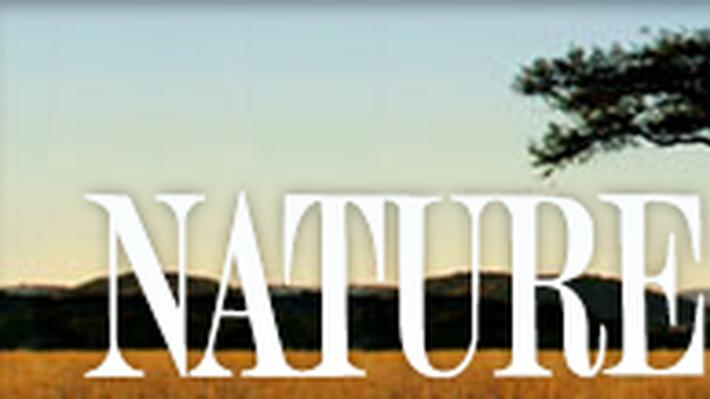 Nature | Flight School: Interview - Joseph Duff, Operation Migration
