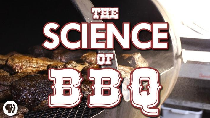 The Science of BBQ!!! | It's Okay to Be Smart