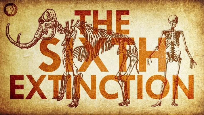 The Sixth Extinction | It's Okay to Be Smart