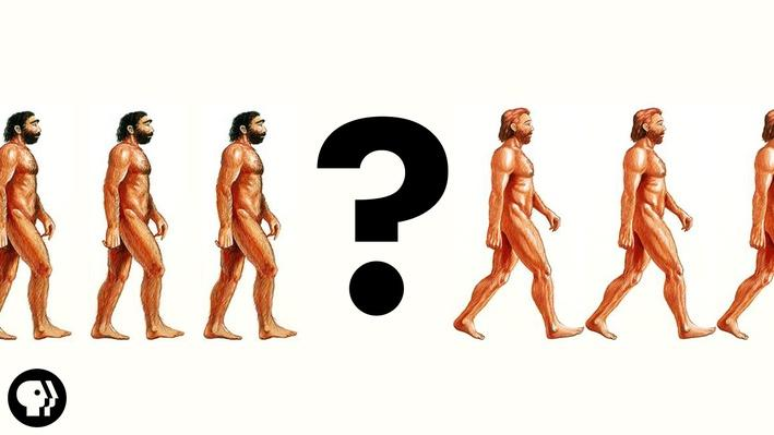 There Was No First Human | It's Okay to Be Smart