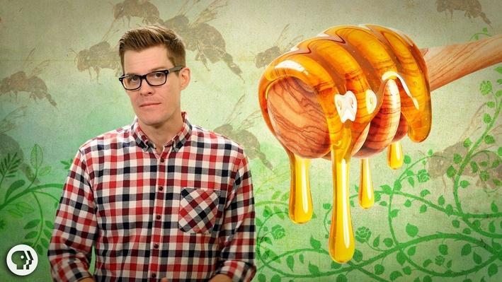 How Do Bees Make Honey? | It's Okay to Be Smart