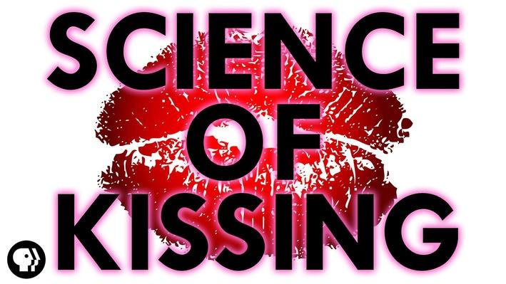 The Science of Kissing  | It's Okay to Be Smart