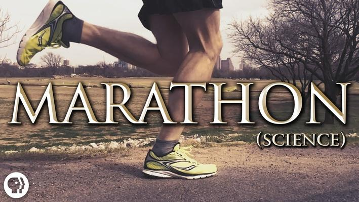 Science of Marathon Running | It's Okay to Be Smart
