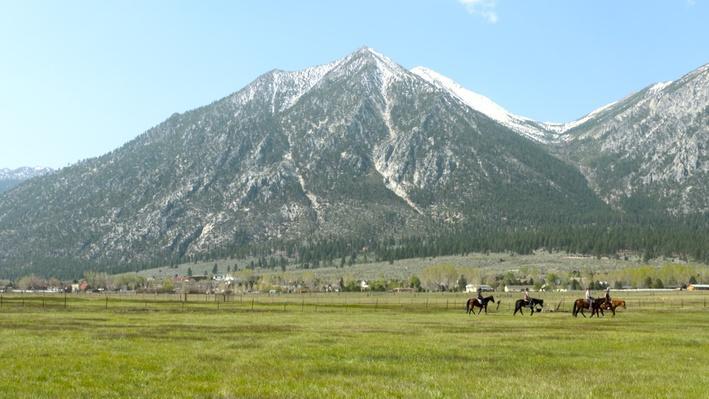 Sheridan Creek Horseback Riding | Outdoor Nevada