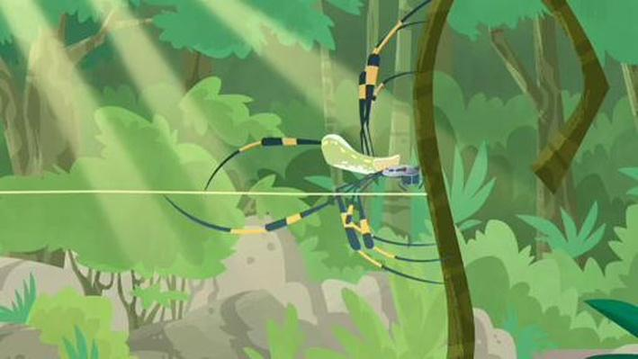 Orbit the Spider | Wild Kratts