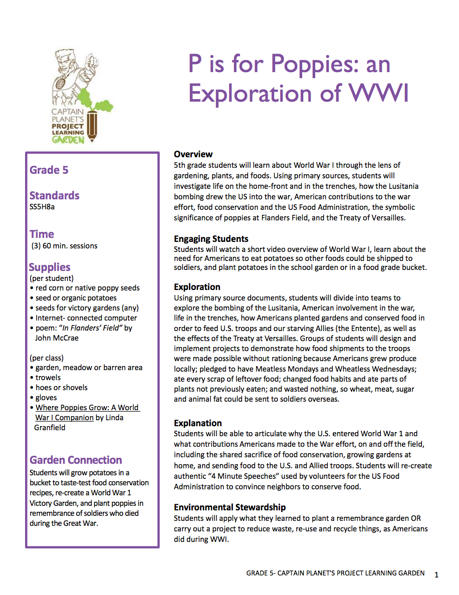 P is for Poppies: an Exploration of World War I | Project Learning