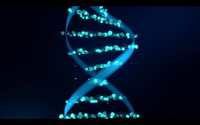 The Human Face of Big Data | Personalized Medicine