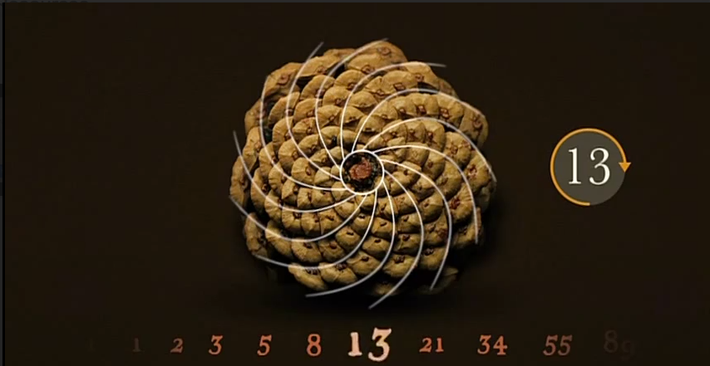 Pi & The Fibonacci Sequence