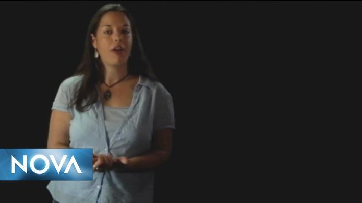 The Secret Life of Scientists & Engineers   Alexandrea Bowman