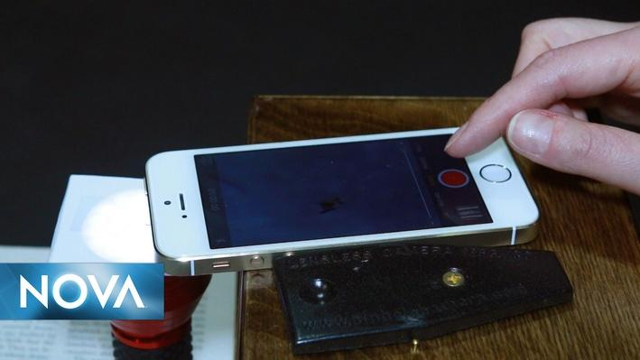 Gross Science | See Microbes with This DIY Phone Microscope