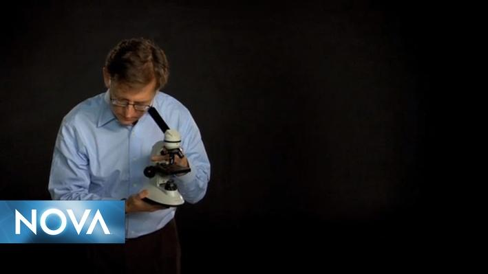 The Secret Life of Scientists & Engineers | Ian Lipkin
