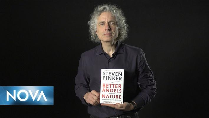 The Secret Life of Scientists & Engineers | Steven Pinker