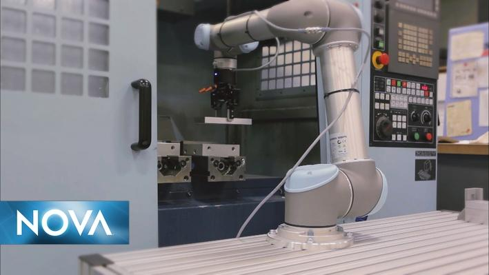 Will Robots Take Away Jobs?