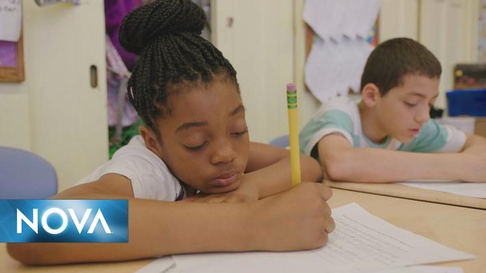 School of the Future | Estrés y el Entorno del Aula