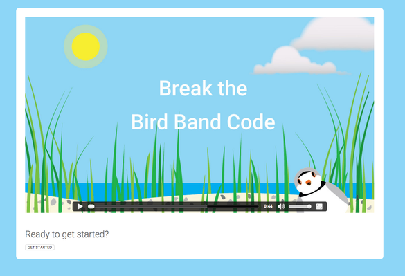 Break the Bird Band Code