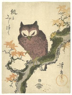 Owl and maple (Kaede ni mimizuku) / RISD STEAM