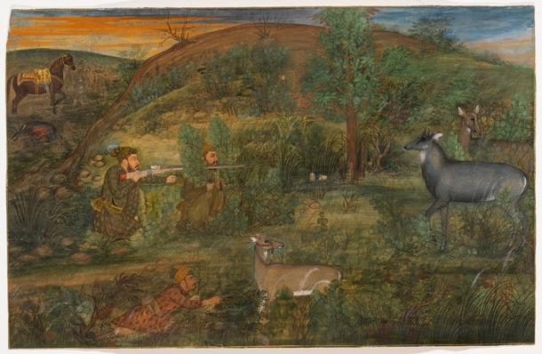 Shah Shuja Hunting Nilgai / RISD STEAM