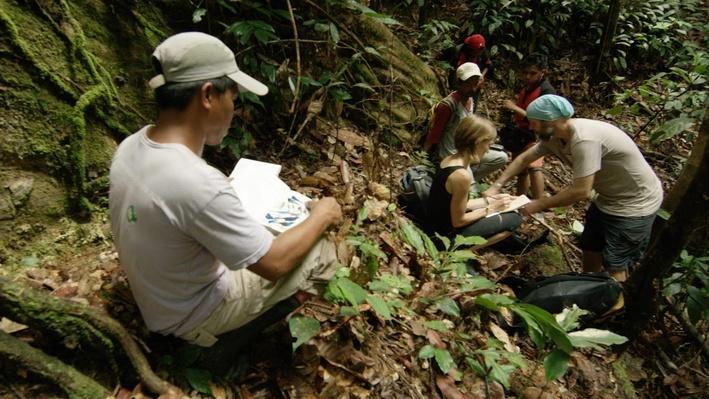 Recording the Rainforest | Part 2 Lesson Plan