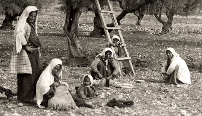 Revolution Comes to Palestine | 1913 Seeds of Conflict