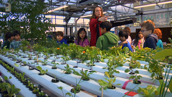 Greenhouse Labs in Schools