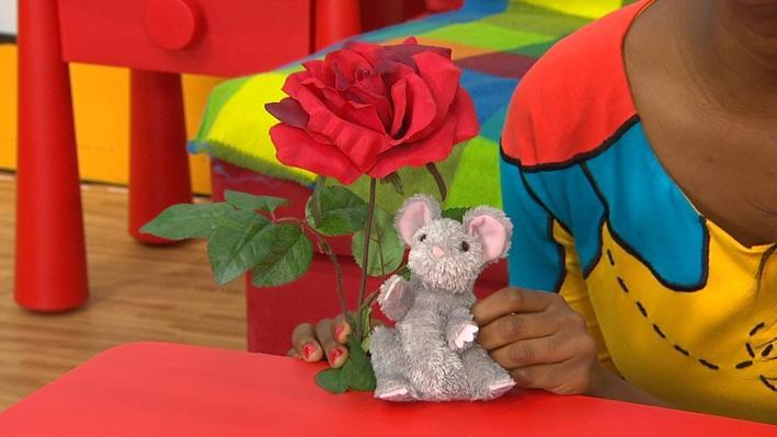 Lili la souris et Rose la rose | Histoires