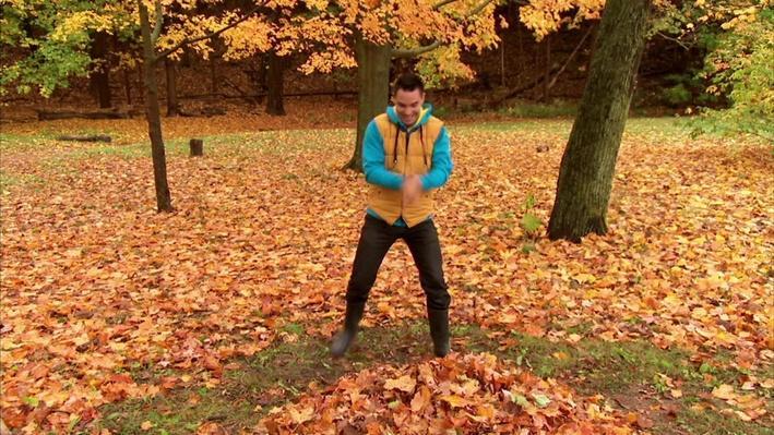 C'est l'automne : La montagne de feuilles | Les saisons de mini