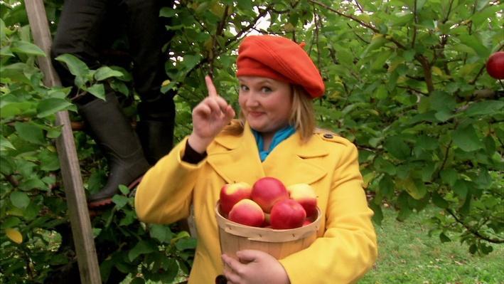 C'est l'automne : Le pommier | Les saisons de mini