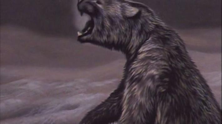 Scientific American Frontiers--Coming Into America, Mammoth Bone Tools