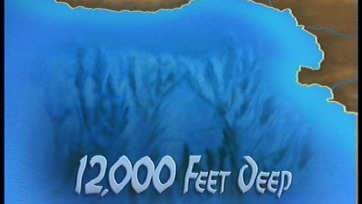 Scientific American Frontiers--Creatures of the Deep, Hidden Depths - Siphonophore