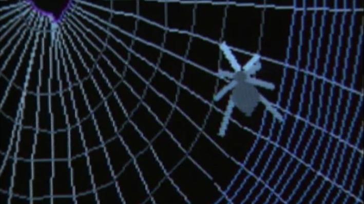Scientific American Frontiers: Spiders   Cyber Spiders