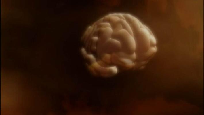 The Secret Life of the Brain, Part 3 | Introduction