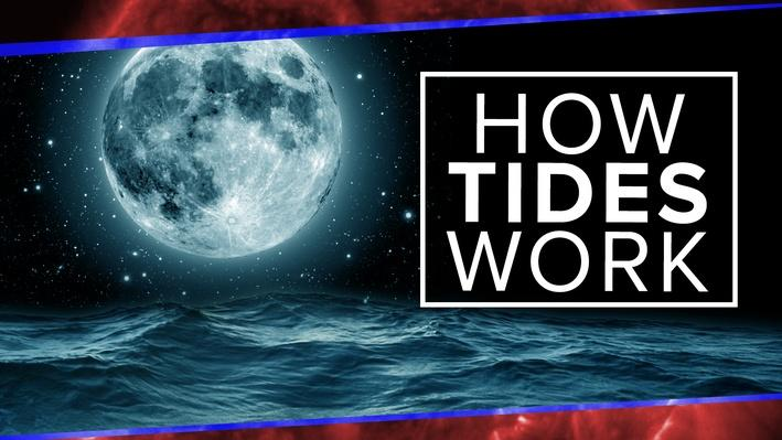 What Physics Teachers Get Wrong about Tides! | PBS Space Time