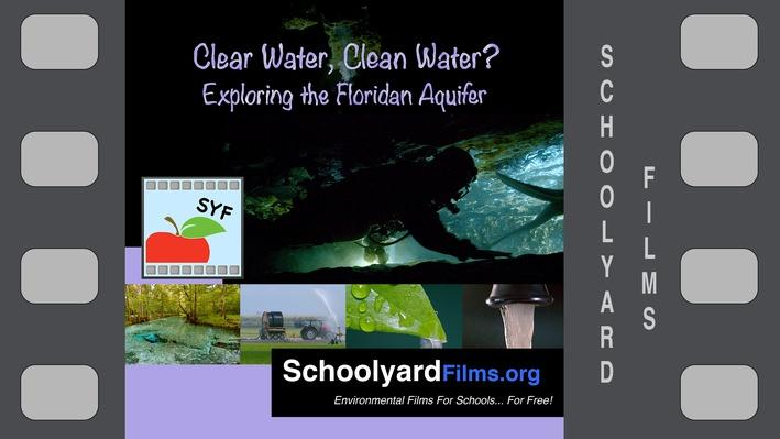 Clear Water, Clean Water? Exploring the Floridan Aquifer