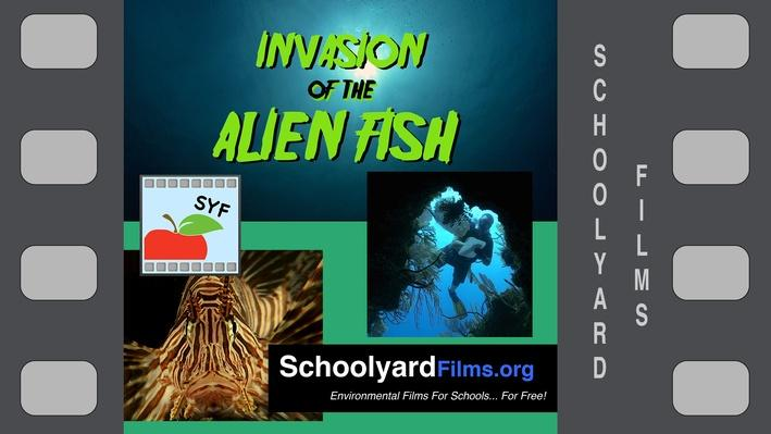 Invasion of the Alien Fish