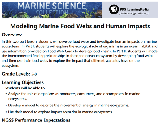 Modeling Marine Food Webs and Human Impacts on Marine Ecosystems | Lesson Plan