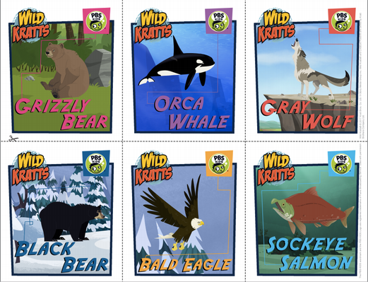 Observing Animals in Alaska | Parent Activity Guide: Grades K-2