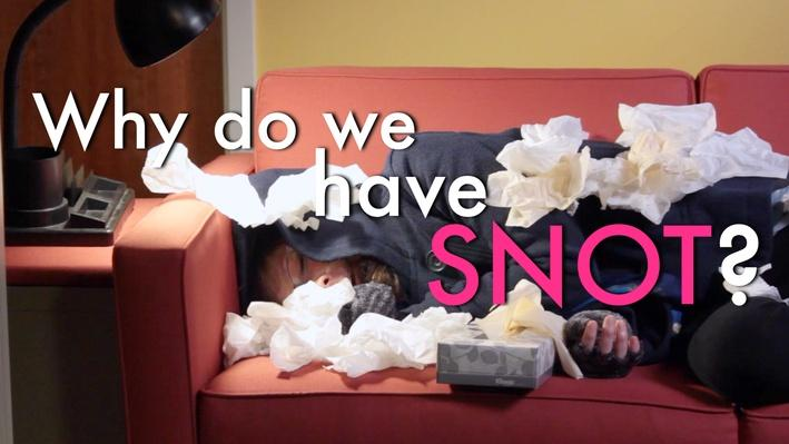What Is Snot? | MIT's Science Out Loud