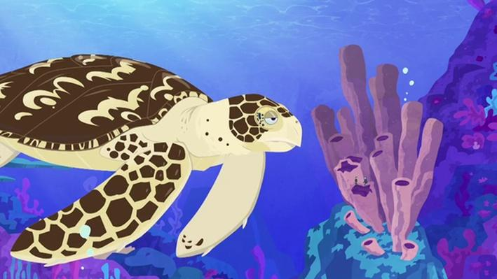 Seeing Sea Turtles | Wild Kratts