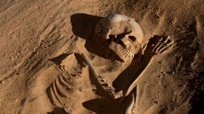 Skeletons of the Sahara: Part 1