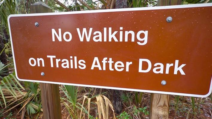 Fast Forward: Skidaway Island State Park